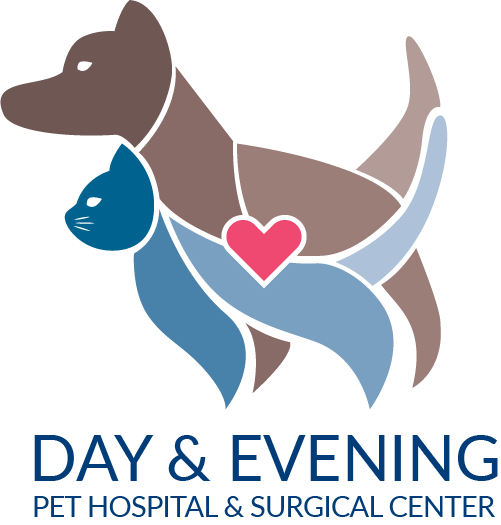Day & Evening Pet Hospital & Surgical Center